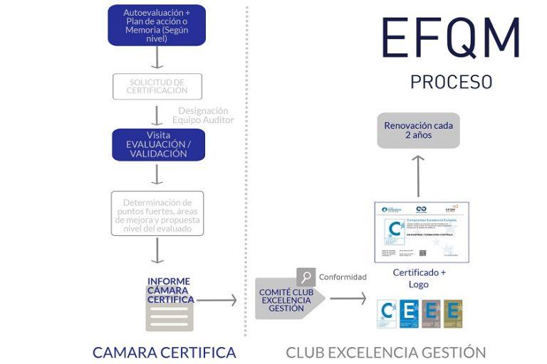 EFQMProceso_2